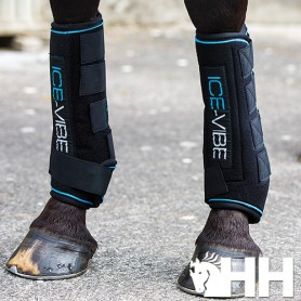 Protector Horseware Ice-Vibe (Set Completo) Tendon