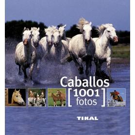 Libro Caballos 1001 Fotos