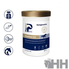 Vitamina Plusvital Energene-Q10 750gr